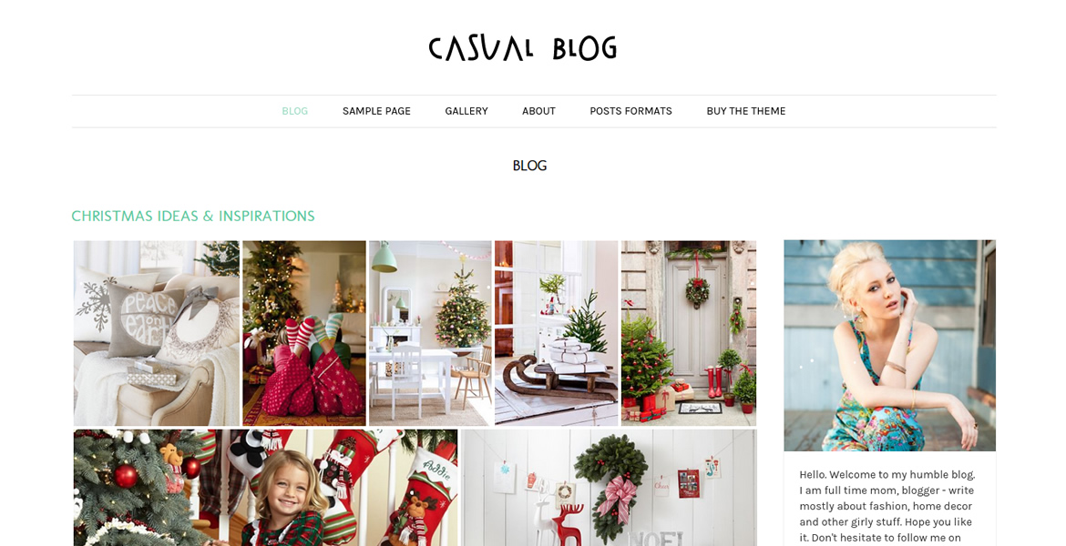 Casual-Blog-wp-theme