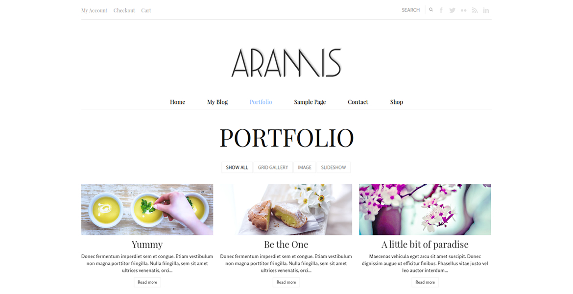 aramis-wordpress-theme-portfolio