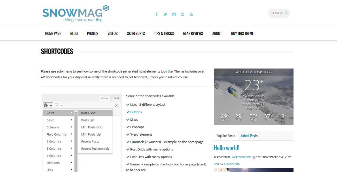 SnowMag-wordpress-theme9