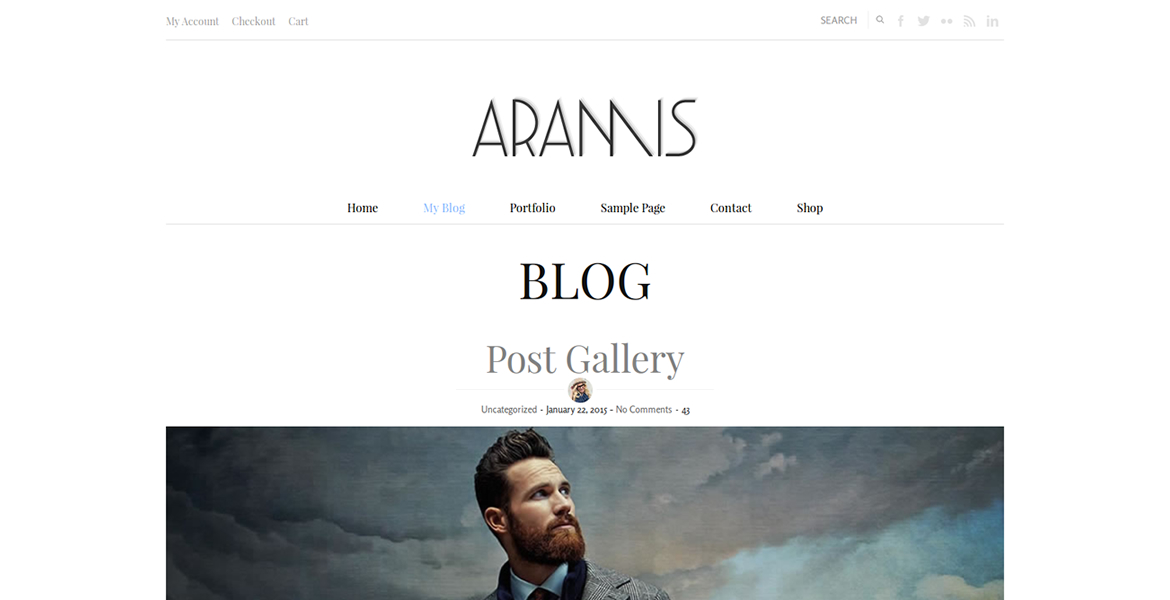 aramis-wordpress-theme-blog