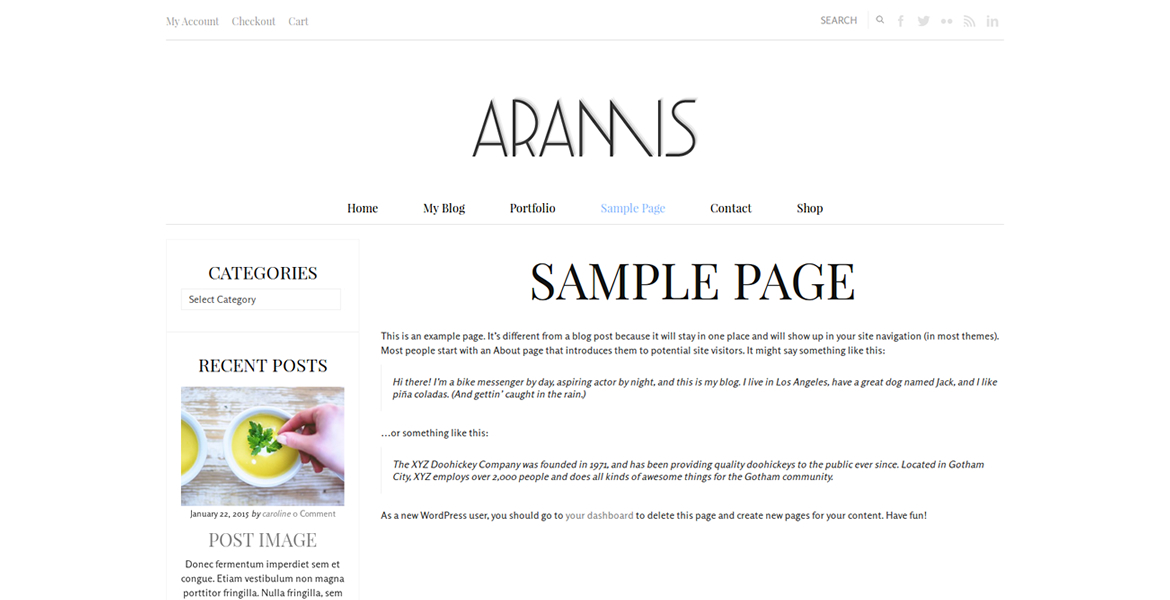 aramis-wordpress-theme-page