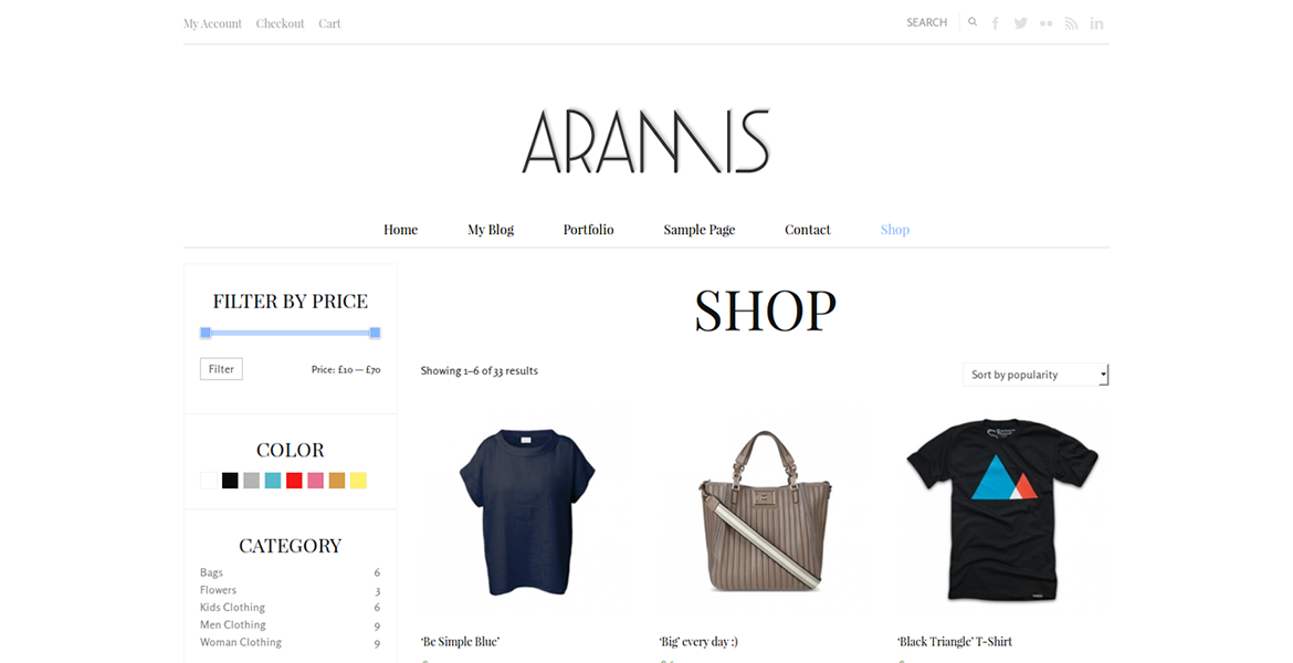 aramis-wordpress-theme-shop
